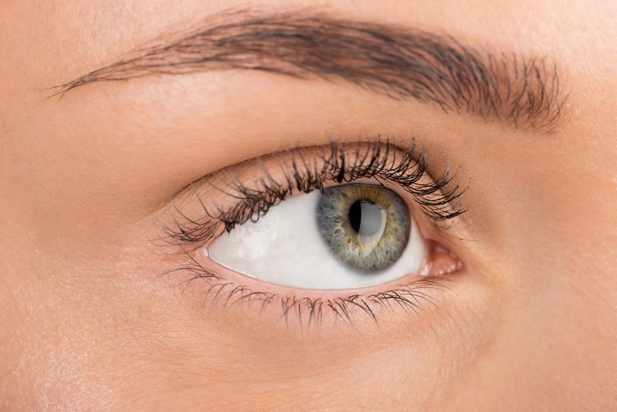 Doença da artéria carótida: como ela afeta a saúde ocular?